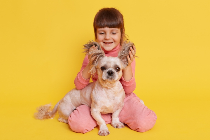 7 Jenis Anjing Ramah Anak yang Aman dan Mudah Dipelihara